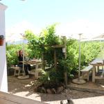 Bramon Wine Estate Foto