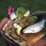 Fangfrische Forellen aus dem Bassin