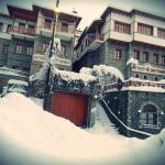 Asteri Metsovo Hotel S.A.
