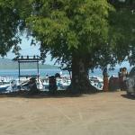 Photo de Menjangan Island
