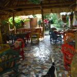 Macaw Bank Jungle Lodge Foto