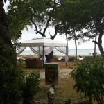 Photo de Ocean Village Club