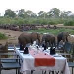 Photo de Elephant Valley Lodge