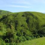 Marinduque Wildlife Sanctuary