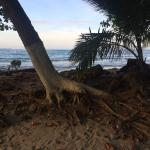 Puerto Viejo Beach Photo