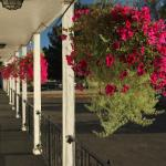 Hotel, Motel and Lodging in Billings, Montana
