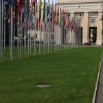 UNOG - Palais des Nations Foto