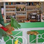le bar Douce Heure Antillaise