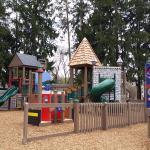 Forsyth Park Photo