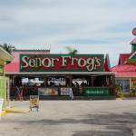 Foto de Senor Frog's Freeport