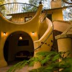 Treehouse Staircase & Patio
