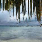 Foto de Playa Tiburon (Shark Beach)