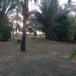 Koyao Island Resort Foto