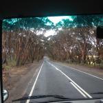 Kangaroo Island Adventure Tours Foto