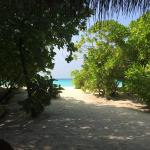 Foto di Palm Beach Resort & Spa Maldives