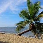 Rincon of the Seas Grand Caribbean Hotel Resmi