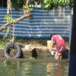 Photo de Alleppey Backwaters Backwater Village Tour