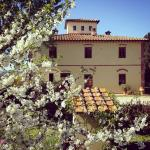 Spring in I Moricci