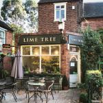 Zdjęcie Lime Tree