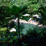 Buena Vista Luxury Villas Foto