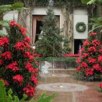 Foto di Longwood Gardens