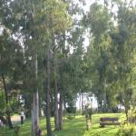 Photo of Hotel DG Garden