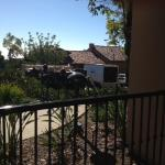 View from porch of 2212