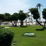 Photo of Bucuti & Tara Beach Resort Aruba