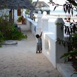 Photo de Red Monkey Beach Lodge