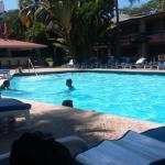 La alberca y el bar / pool and bar area