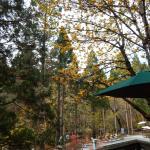 Coffee Creek Ranch Aufnahme