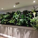 Photo de Auckland City Hotel-Hobson St