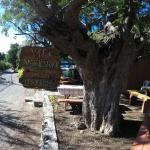 Vie's Snack Shack Sign from Road