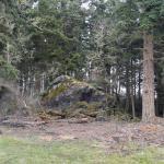 Foto di Fort Casey State Park