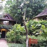 Bilde fra Rayavadee Resort