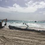 Crane Beach Foto