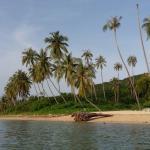 Photo de Centra Coconut Beach Resort Samui