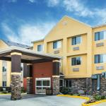 Comfort Inn & Suites Waterloo
