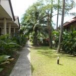 Chemin plage/bungalow