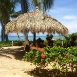 beach bungalow's private palapa