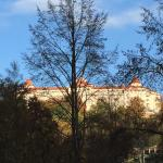 Quisisana Palace Foto