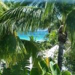 Photo de Surfcomber Miami South Beach, a Kimpton Hotel