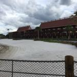DVC Villas viewed from the Bungalow's
