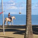 Aquarius On The Beach Foto
