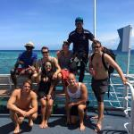 Cairns Dive Centre Day Trips Foto