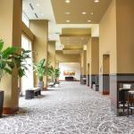 Photo of Raleigh Marriott City Center