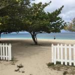 Grand Anse Beach Foto