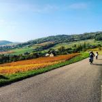 Hautes Cotes de Beaune cycling