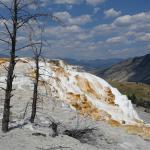 Photo de Mammoth Hot Springs