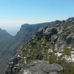 Photo de Table Mountain National Park